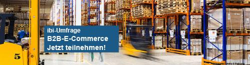 ibi-Umfrage B2B-E-Commerce